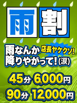 雨割り-フォレスト300-400