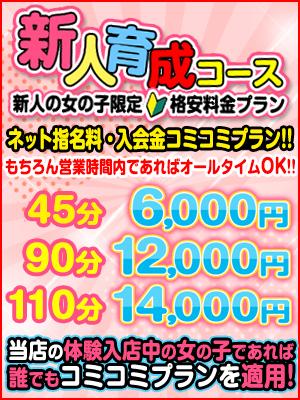 新人育成コース-300-400