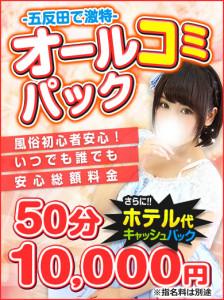 オールコミパック390-520